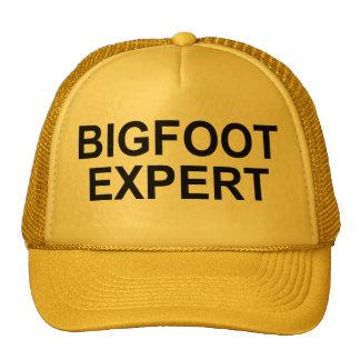 """""""Bigfoot Expert"""" Hat"""