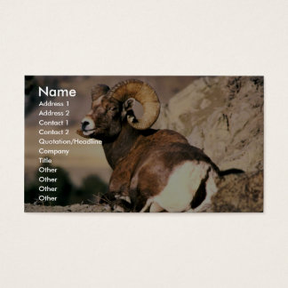 Bighorn Ram Business Card
