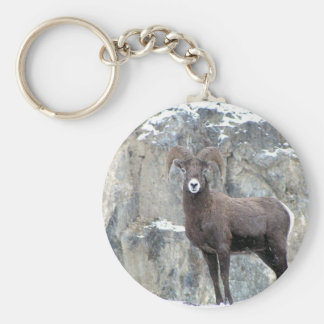 Bighorn Sheep Basic Round Button Keychain