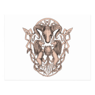 Bighorn Sheep Lion Tree Coat of Arms Celtic Knotwo Postcard