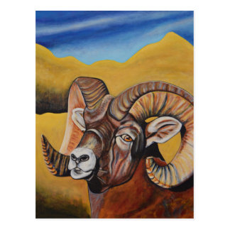 Bighorn Sheep Postcard