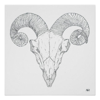 Bighorn Sheep Print (large)
