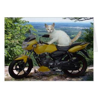 Biker Cat Notecard