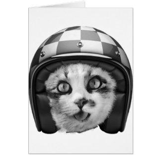 Biker cat T-Shirt Card