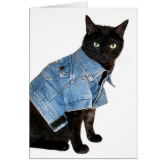 biker kitty card