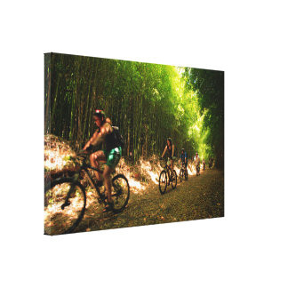 Biking in bamboo trail canvas print
