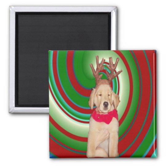 billie-the-golden-reindeer magnet