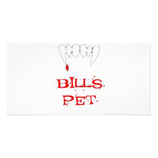 Bills Pet Photo Card Template
