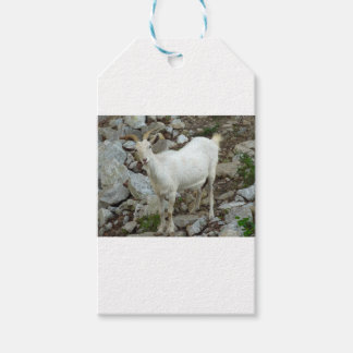 Billy Goat Gift Tags