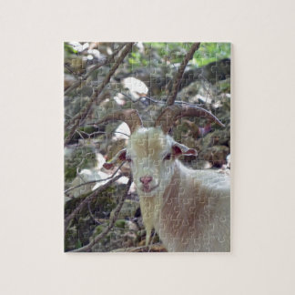 Billy Goat Jigsaw Puzzle