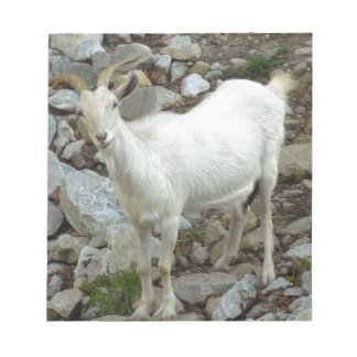 Billy Goat Notepad