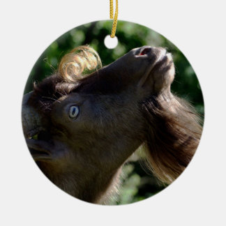 Billy Goat Round Ceramic Ornament