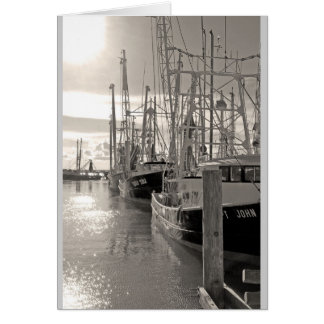 Biloxi Shrimp Boats at Dock Card