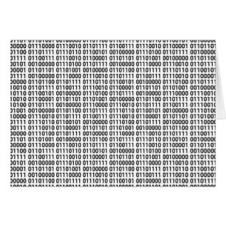 Binary: I love to program