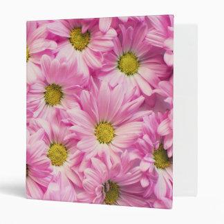 Binder - Pink Gerbera Daisies