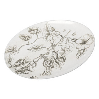 Bindweed Party Plates