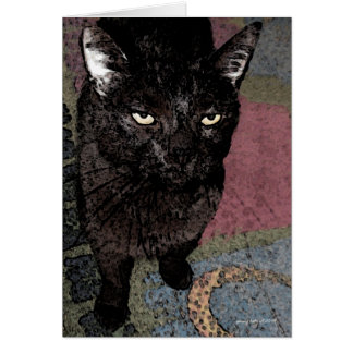 Binx II Greeting Card