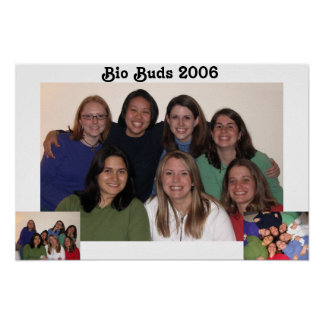 bio buds 2006 poster