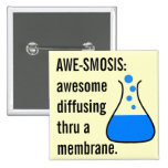 Biology & Chemistry: Teaching Science is Awesome