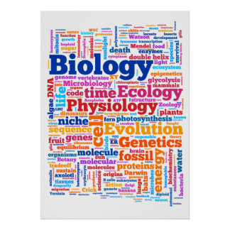 Biology Wordle No. 7 Poster