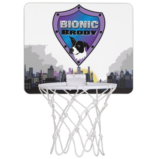 Bionic Brody Basketball game Mini Basketball Backboard