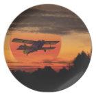 biplane plate