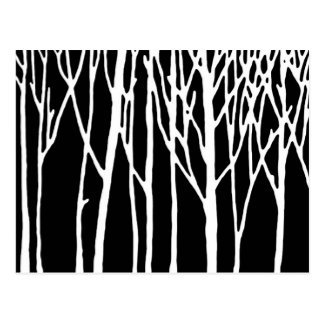 Birch Forest by Leslie Peppers Postcard