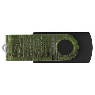 Birch Forest USB Flash Drive