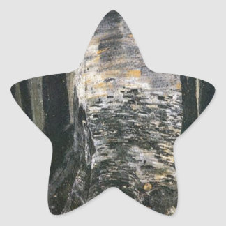 Birch in a Forest Sticker