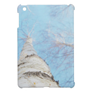 birch iPad mini cover
