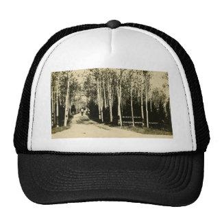Birch Road Harbor Beach Resort, Michigan Trucker Hat