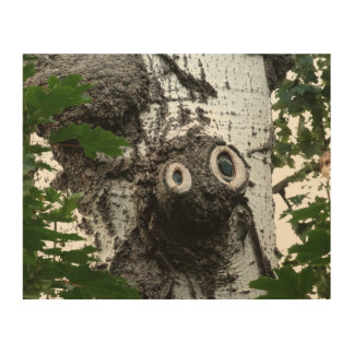 Birch Soul Tree Magic Face Photography Wall Art Wood Canvas