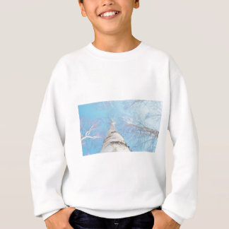 birch sweatshirt