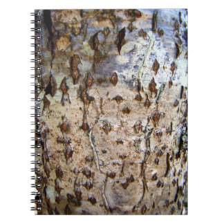 Birch Tree Bark Photo Notebook