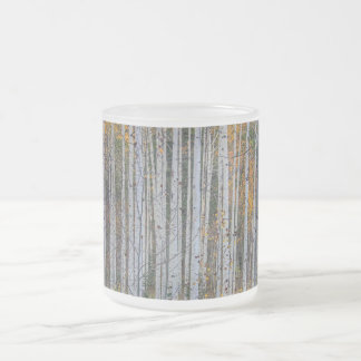 Birch tree forest frosted glass coffee mug
