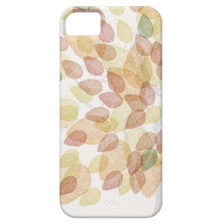 Birch Tree in Fall Colors iPhone 5 Case