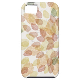 Birch Tree in Fall Colors iPhone 5 Cover