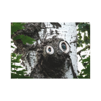 Birch  Tree Magic Face Photography Canvas Print