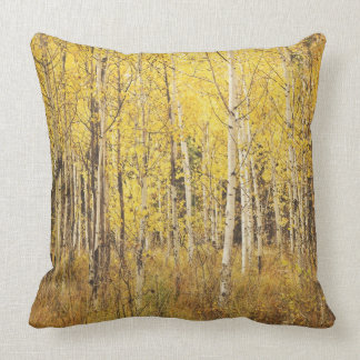 Birch Tree Pillow - yellow, brown gold, white