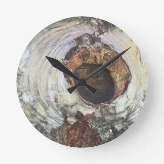 Birch Tree Round Clock