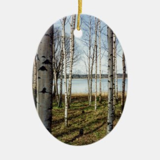 Birch trees forest in Finland Ceramic Ornament