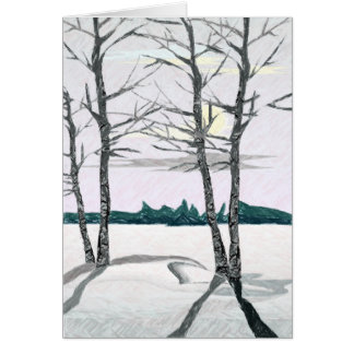Birch Trees in the Morning Card