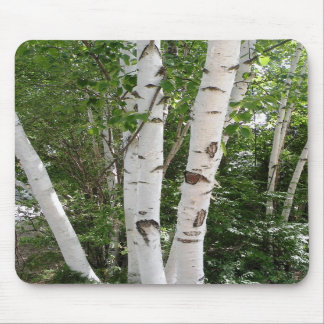 Birch Trees Mousepad