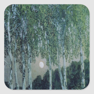 Birch Trees Square Sticker