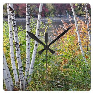 Birch Trees Wallclocks