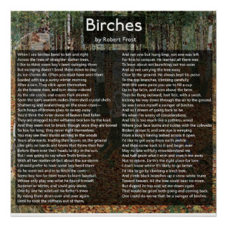 Birches by Robert Frost Complete Poem/Birkenwald Poster
