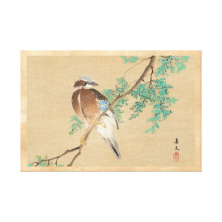 Bird and Flower, Eurasian Jay and Chinese Arborvit Canvas Print