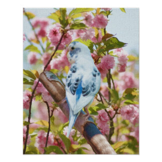 Bird and Flowers Springtime Print