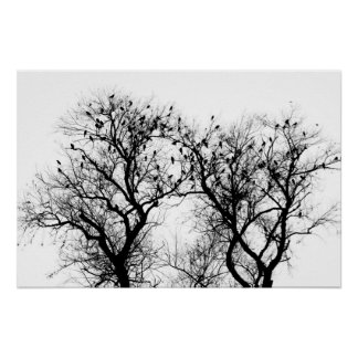 Bird and tree silhouette. poster
