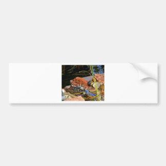 bird bath bumper sticker
